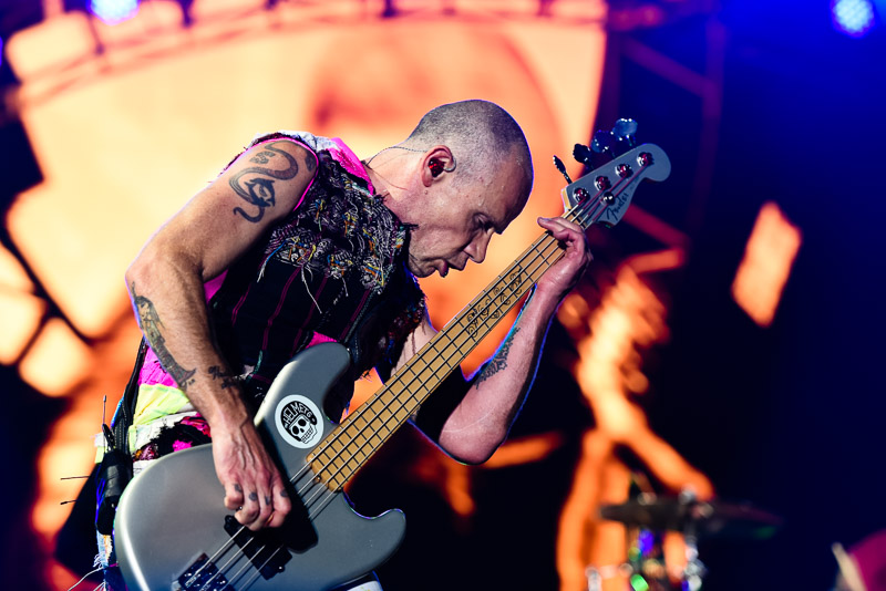 Foto von Flea mit den Red Hot Chilli Peppers live bei Rock am Ring